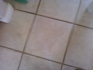 before cleaning the grout
